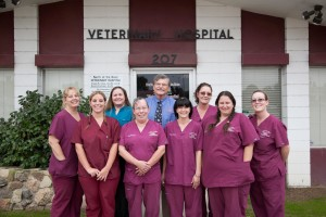 Pet Care - North of the River Veterinary Hospital