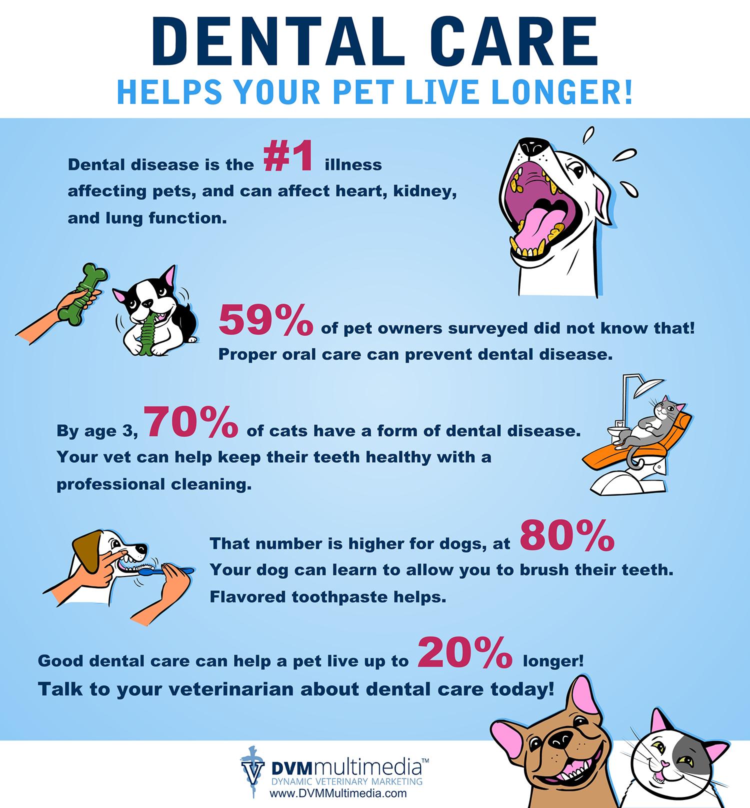 Dental Care Is Vital