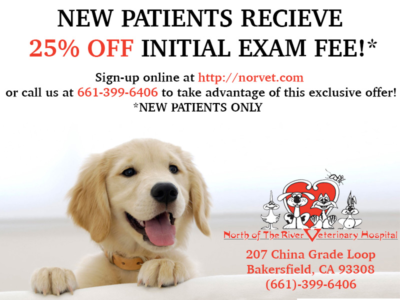 North of the River Veterinary Hospital - Initial Exam Discount Coupon